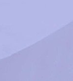 lila dragon blanco